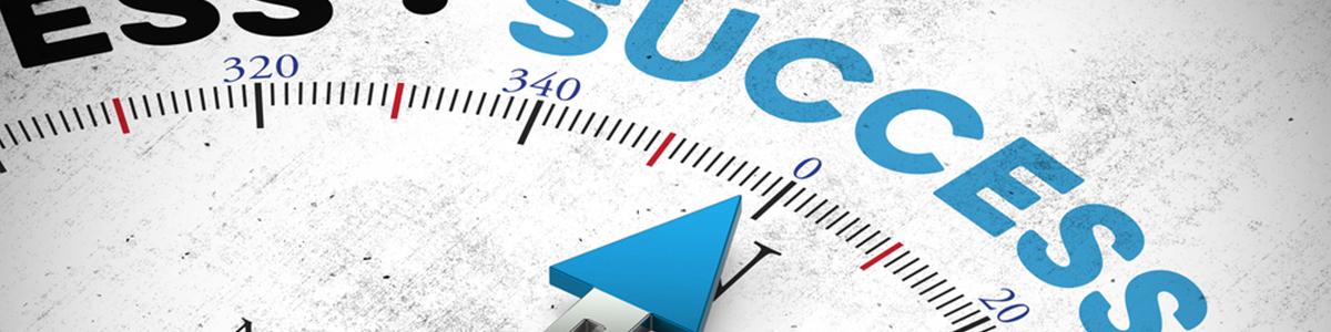 Erfolg Management Themen